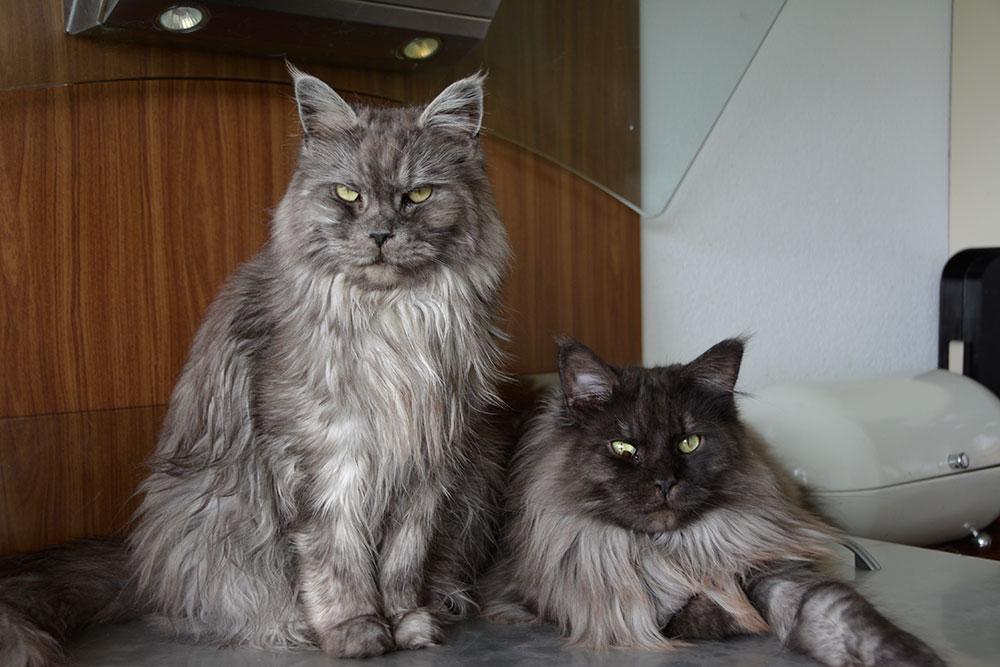 Myrna en Charlie